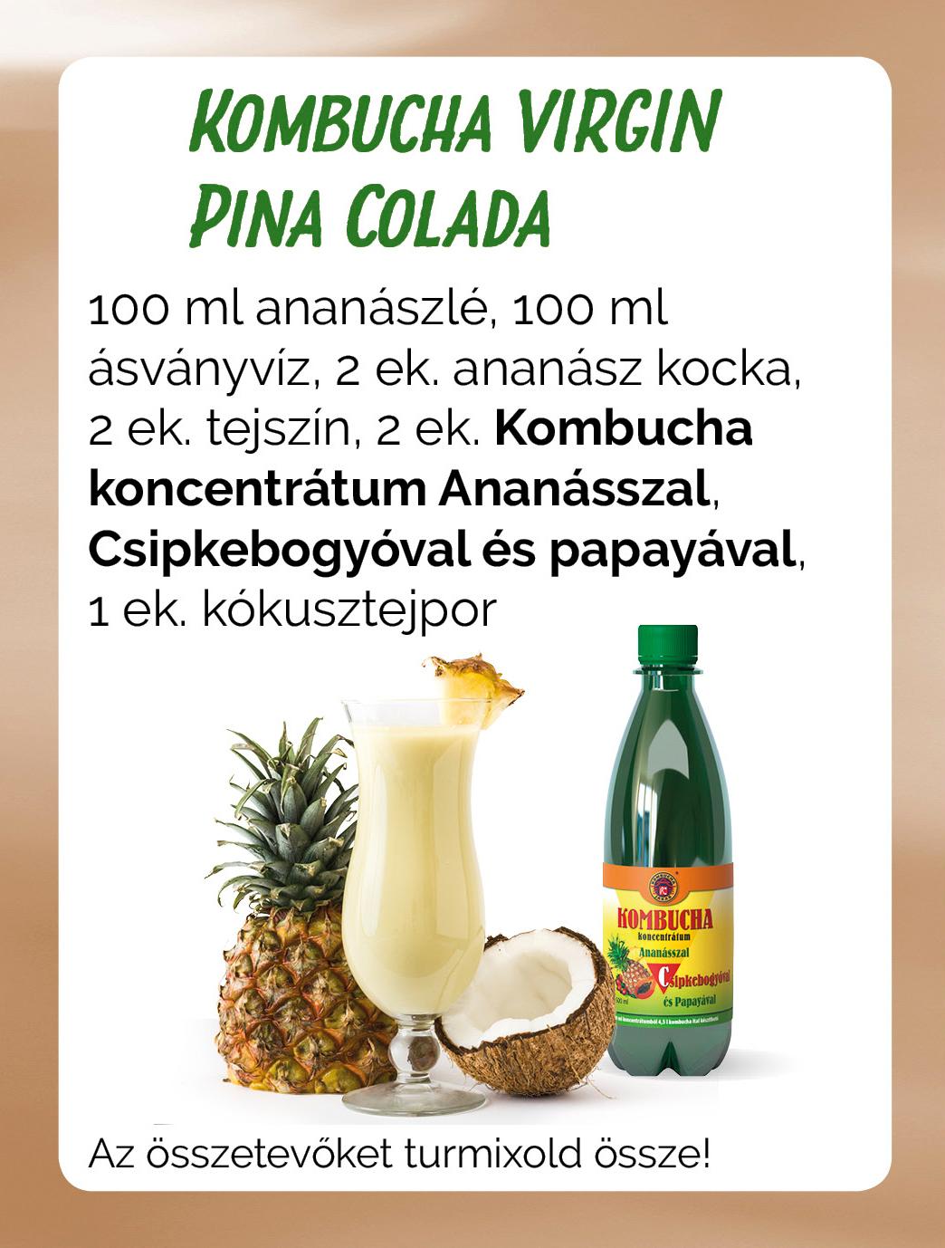 Kombucha Vigrin Pina Colada