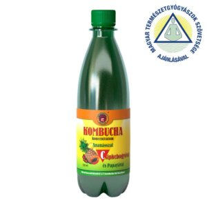 Kombucha C koncentrátum (500 ml)