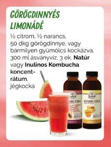 görögdinnés limonádé uj