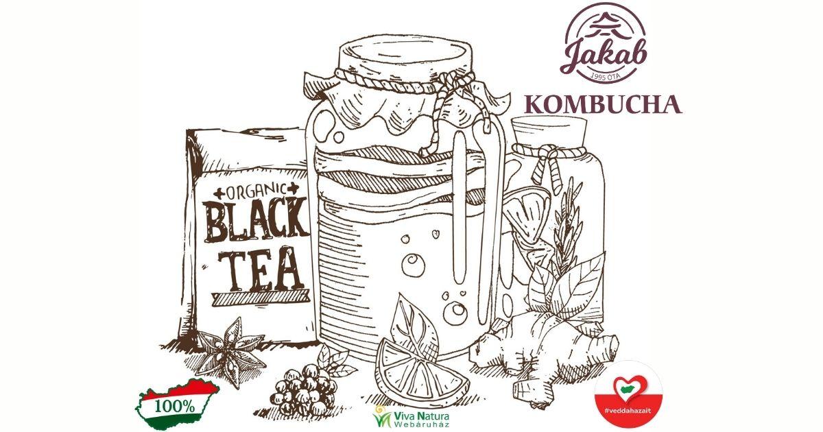 kombucha fermentalt emesztes ital 1200 630 01